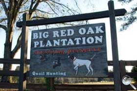 Big Red Oak Plantation